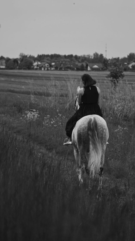 Pferdeshooting in Alling