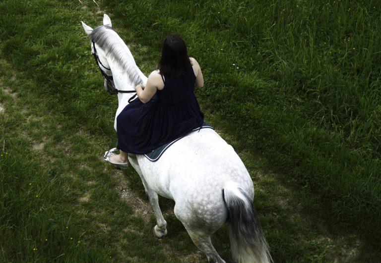 Pferdefotograf nähe München